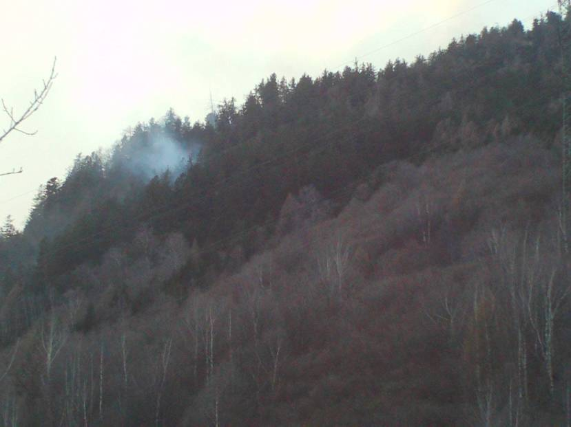 Wildfire Mesocco, Switzerland