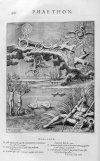 Phaethon. Image: metoe.co.uk
