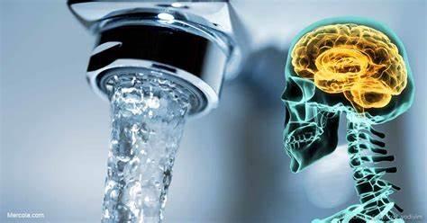 Fluoride IQ