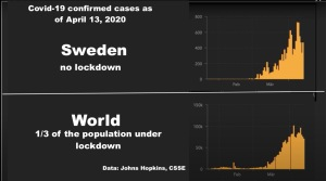 Sweden no lockdown vs. World cover-19 cases