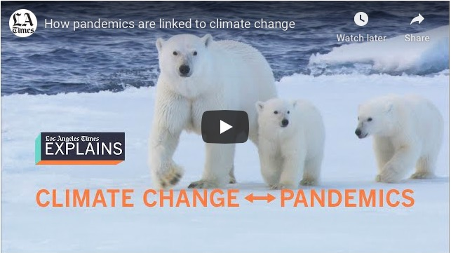 Manmade Climate Change and Pandemic