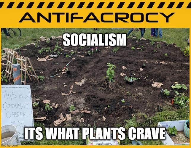 Antifactory Socialism